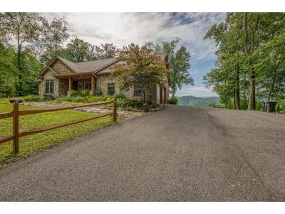 Bristol TN Single Family Home For Sale: $540,000