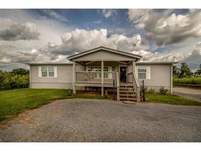 Rogersville Single Family Home For Sale: 996 Burem Road