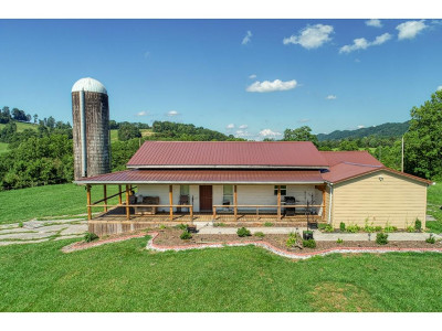 Single Family Home For Sale: 506 Clinch Valley Rd