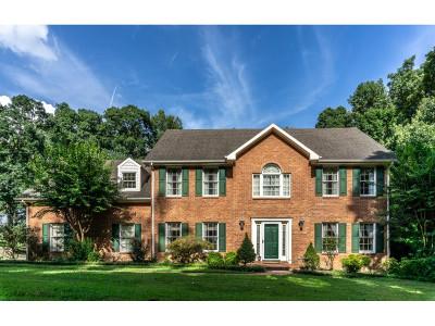 Greeneville Single Family Home For Sale: 280 Grapevine Trail