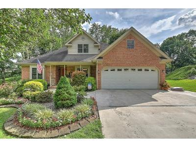 Kingsport Single Family Home For Sale: 341 Pettyjohn Road