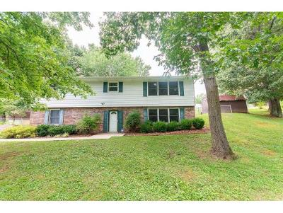 Bristol VA Single Family Home For Sale: $164,885