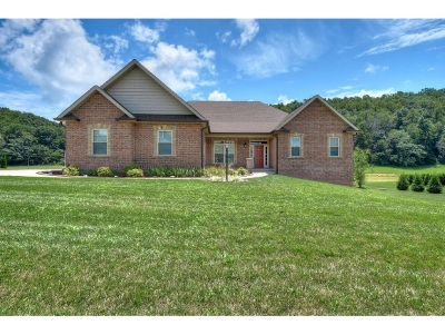 Johnson City TN Single Family Home For Sale: $468,900