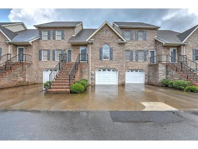 Kingsport Single Family Home For Sale: 2006 Timbers Edge Court