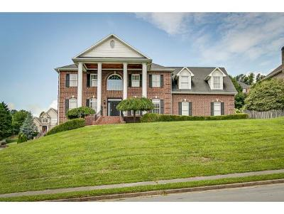 Johnson City TN Single Family Home For Sale: $384,900
