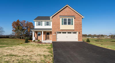 Jonesborough Single Family Home For Sale: 1258 Peaceful Dr