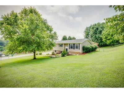 Kingsport Single Family Home For Sale: 3000 Hi Drive