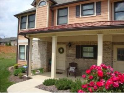 Johnson City Condo/Townhouse For Sale: 12 Palisades Pt #12