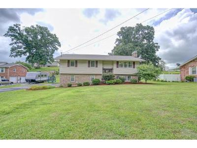 Kingsport Single Family Home For Sale: 365 Rock Valley