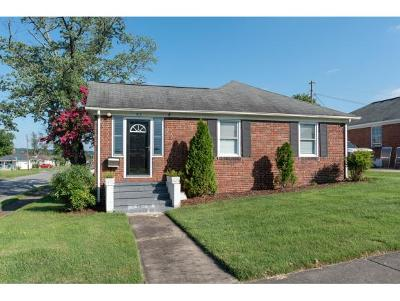 Kingsport Single Family Home For Sale: 913 Birch Street