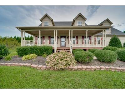 Jonesborough Single Family Home For Sale: 188 Mulberry Bend