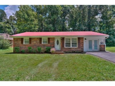 Jonesborough Single Family Home For Sale: 205 Forrest Circle
