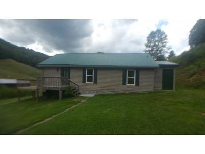 Roan Mountain Single Family Home For Sale: 329 Shell Creek Rd