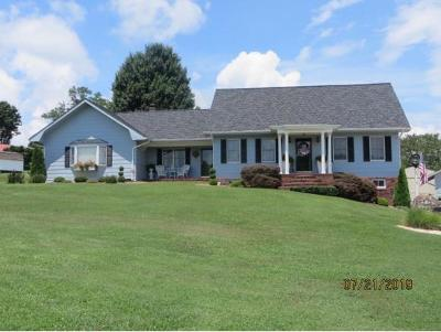 Bristol VA Single Family Home For Sale: $250,000