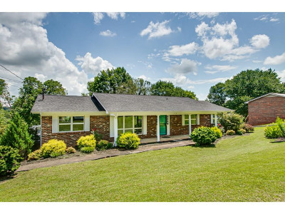 Kingsport Single Family Home For Sale: 713 Foothills Road