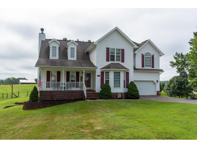 Blountville Single Family Home For Sale: 215 Brown Circle