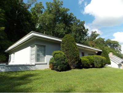 Bristol Single Family Home For Sale: 49 W. Valley Drive