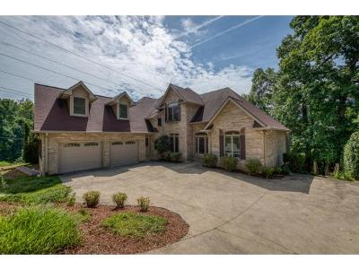 Single Family Home For Sale: 379 Lakeshore Dr