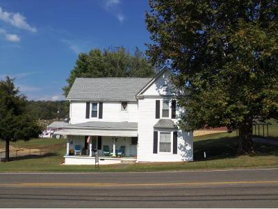 Fall Branch Single Family Home For Sale: 1427 Highway 93