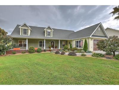 Jonesborough Single Family Home For Sale: 290 Upper Sand Valley Road