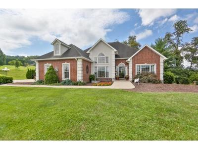 Jonesborough Single Family Home For Sale: 281 Hales Road