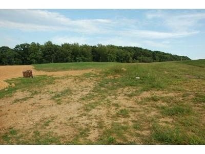 Residential Lots & Land For Sale: 3137 London Rd