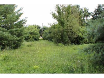 Residential Lots & Land For Sale: Scott St.