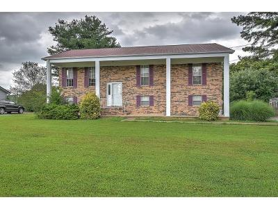 Greeneville TN Single Family Home For Sale: $150,000