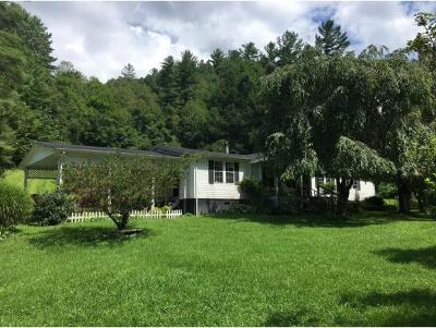 Erwin TN Single Family Home For Sale: $179,900