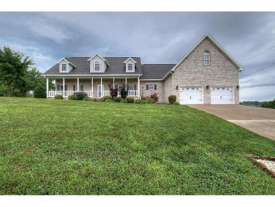 Jonesborough Single Family Home For Sale: 592 Sand Ridge Circle