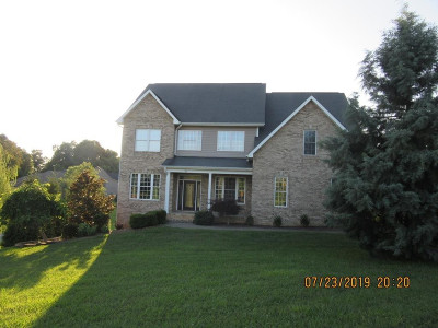 Johnson City Single Family Home For Sale: 20 Ashworth Court