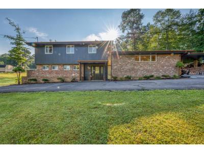 Damascus, Bristol, Bristol Va City Single Family Home For Sale: 15217 Wilderness Rd