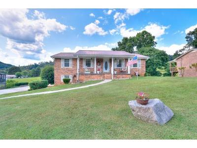 Mount Carmel Single Family Home For Sale: 311 Spruce Street