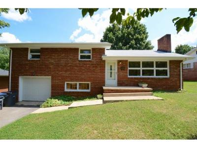 Kingsport Single Family Home For Sale: 920 Fairmont Ave