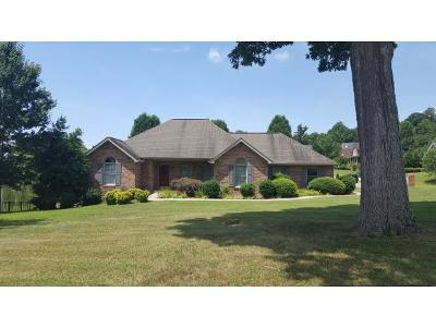 Kingsport Single Family Home For Sale: 1001 Allandale Circle