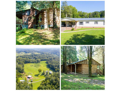 Fall Branch Single Family Home For Sale: 19675 Horton Highway