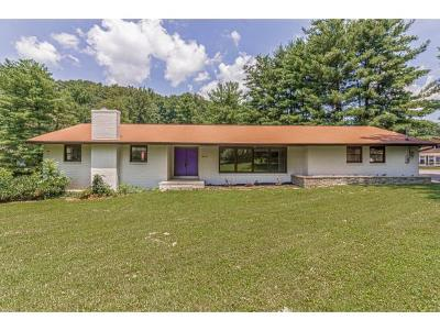 Blountville Single Family Home For Sale: 440 Wine Circle