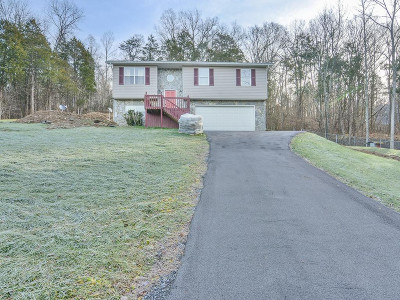 Fall Branch Single Family Home For Sale: 19300 Horton Hwy