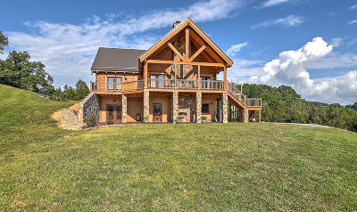 Kingsport TN Single Family Home For Sale: $1,495,000
