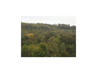 Bristol Residential Lots & Land For Sale: Highway 11 West