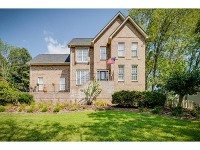 Blountville Single Family Home For Sale: 117 Southridge Drive