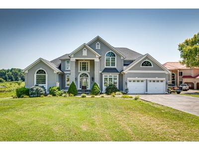 Blountville Single Family Home For Sale: 205 Sandy Point Dr