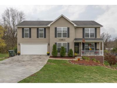 Bristol VA Single Family Home For Sale: $249,900