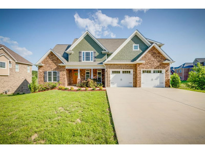 Kingsport Single Family Home For Sale: 5028 Rose Gardens Circle