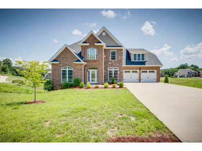 Kingsport Single Family Home For Sale: 5014 Rose Garden Circle