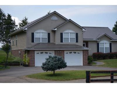 Jonesborough Single Family Home For Sale: 193 W Harmony Acres Drive