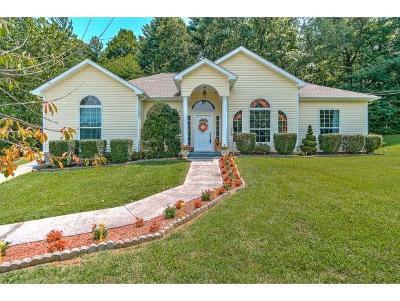 Jonesborough Single Family Home For Sale: 211 Big Bear Lane