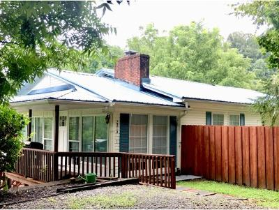 Johnson City Single Family Home For Sale: 2819 McKinley Rd