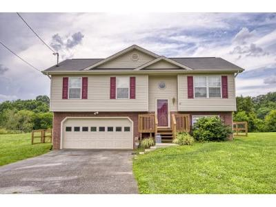 Jonesborough Single Family Home For Sale: 177 Thelma Hannabas Ln