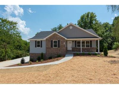 Single Family Home For Sale: 832 Ava Dr